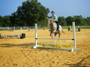 panama city horse jumping lessons