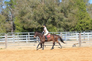 Horseback riding lesson at CV Equestrian in Chipley, FL