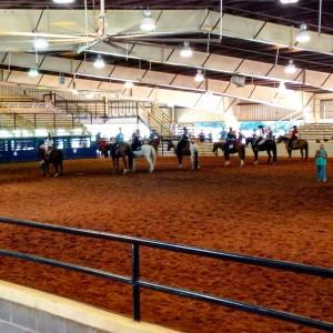 western pleasure horse show