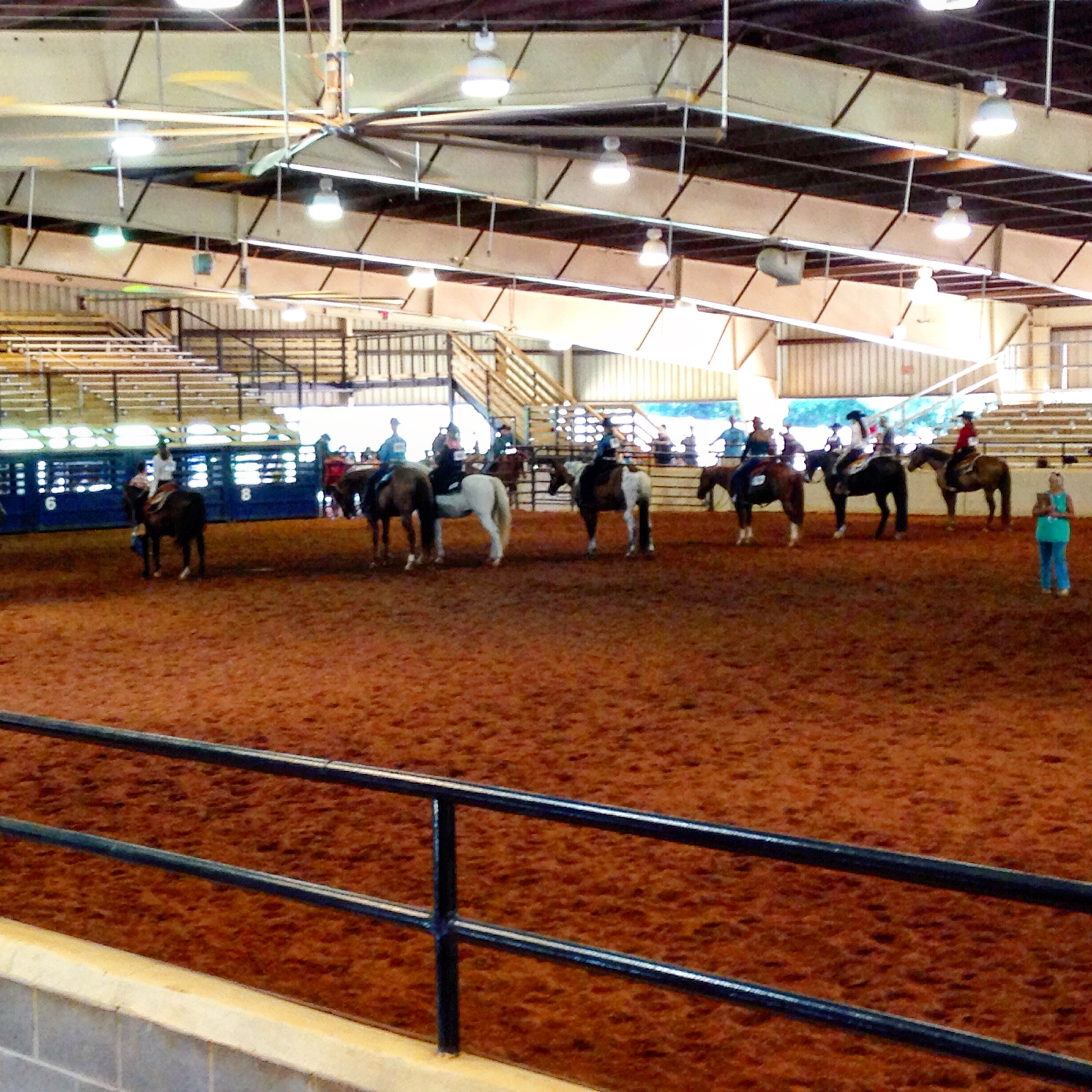 Dgaha June 2015 Open All Breed Horse Show Cv Equestrian Horseback Riding Lessons Training Horse Stables 850 527 6575