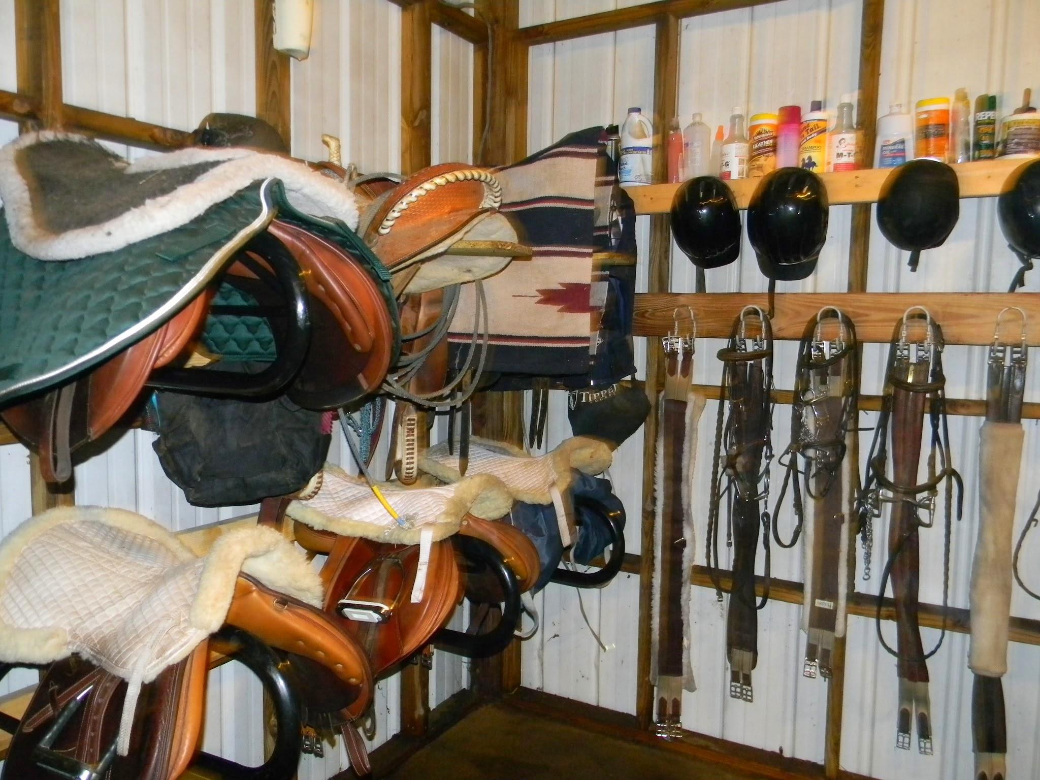 Cv Equestrian Horseback Riding Lessons Training Horse Stables 850 527 6575