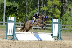 Portia showing off welsh pony, Cash for Gold, at SHJA-sanctioned Cavallo Farms Horse Show.