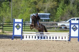 CV Equestrian Riders Demonstrate Their Skills