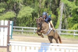 cavallo-march-2015-25