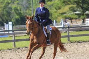 cavallo-march-2015-28