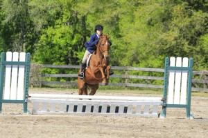 It's easy to see why this chestnut thoroughbred mare and her rider are so successful!