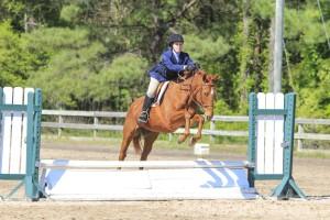 Horseback riding teaches many important skills, including responsibility and goal-setting.