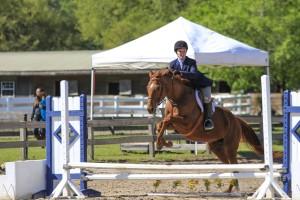 cavallo-march-2015-36