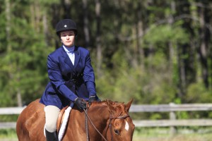 This coppery thoroughbred mare and her talented rider impressed the judges at the horse show under careful instruction by Coral Vanghel.