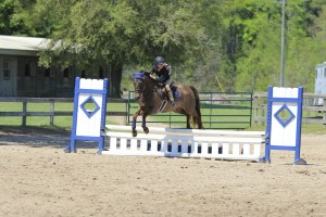 Portia riding her pony through a rollback turn in the puddle jumper class representing CV Equestrian from Panama City.