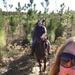 Horseback Riding Trail Ride in Panama City, FL